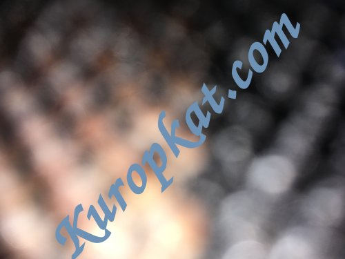 The Kuropkat Professional and Commercial Sites